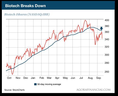 Biotech Breaks Down