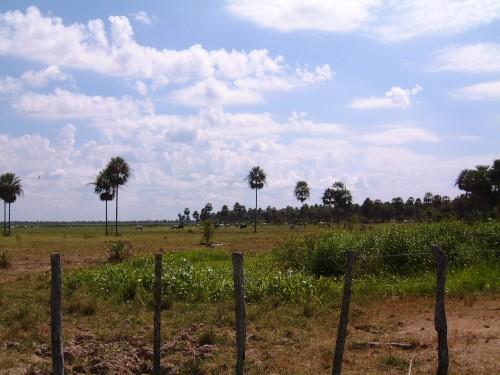 Paraguay Land