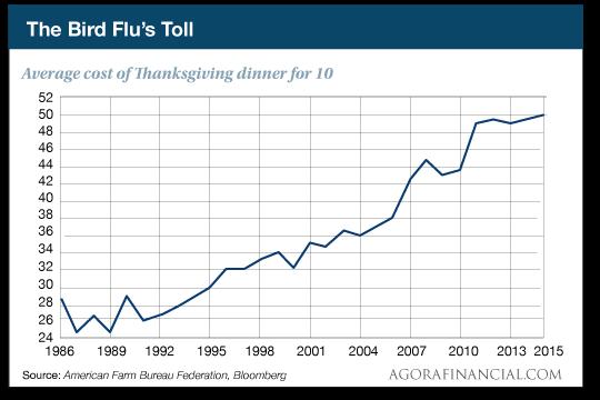 The Bird Flu's Toll