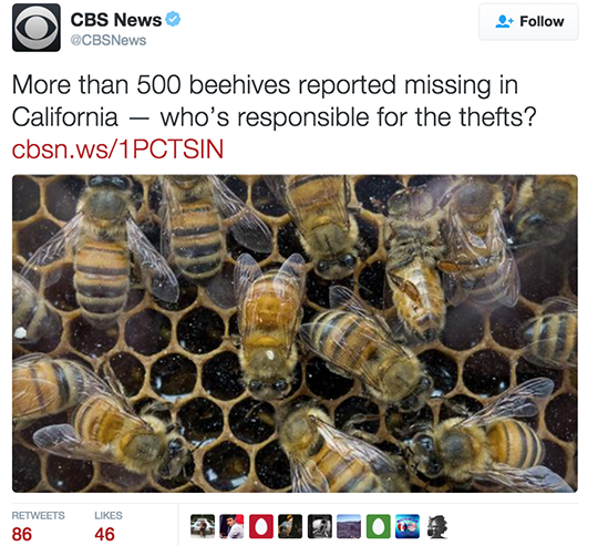 CBS News Tweet.png