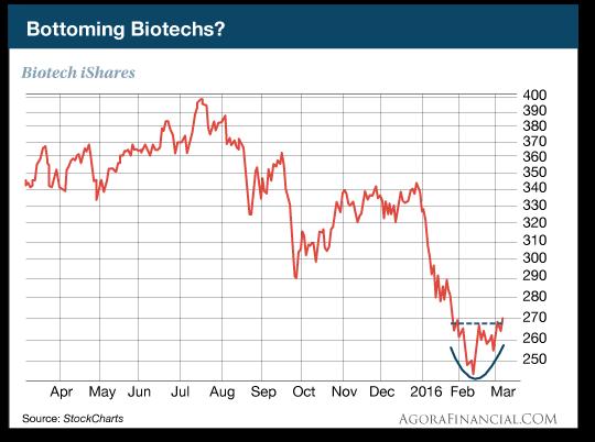 Bottoming Biotech
