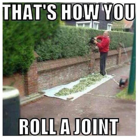 Hemp Joint