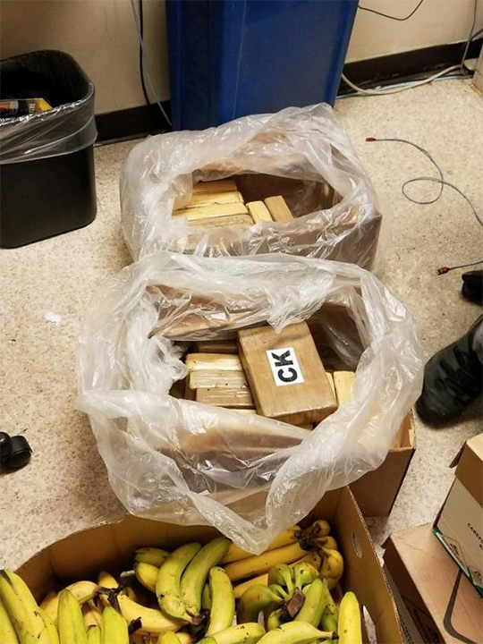 King County Cocaine Bust